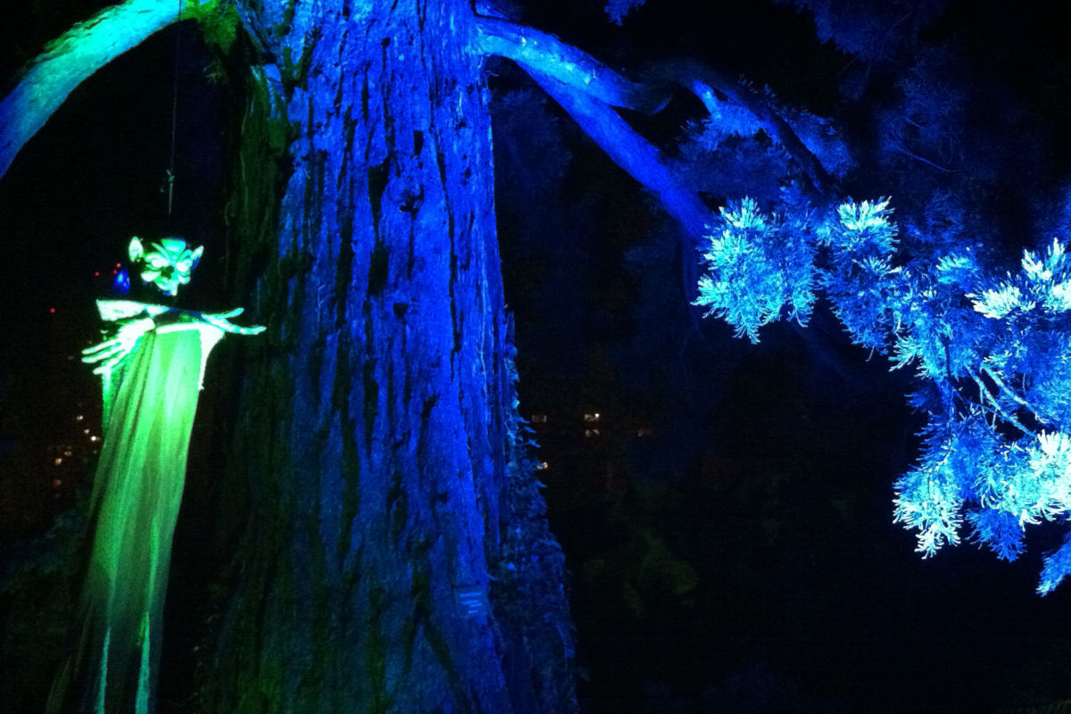 beleuchtungskonzept_halloween-im-zoo-koeln_dreimeister_01