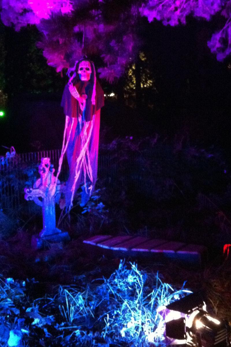 beleuchtungskonzept_halloween-im-zoo-koeln_dreimeister_02